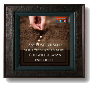 any positive seed you constantly sow